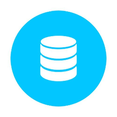 Specialista database